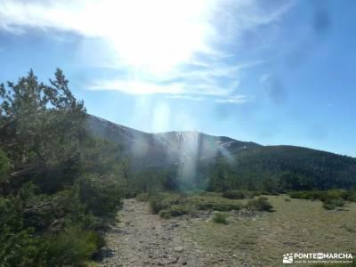 Loma del Noruego y Pinares de Valsaín;senderismo en almeria madrid sierra norte granada alpujarras